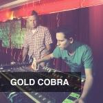 Gold Cobra